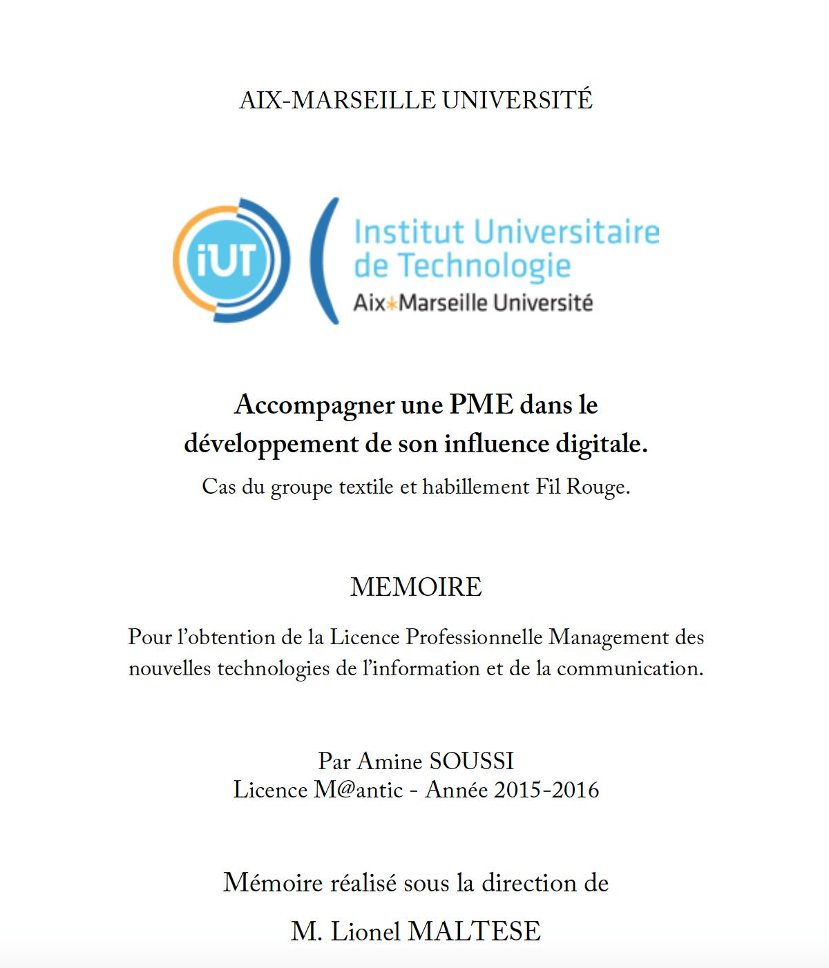 Mémoire Amine SOUSSI Influence digitale